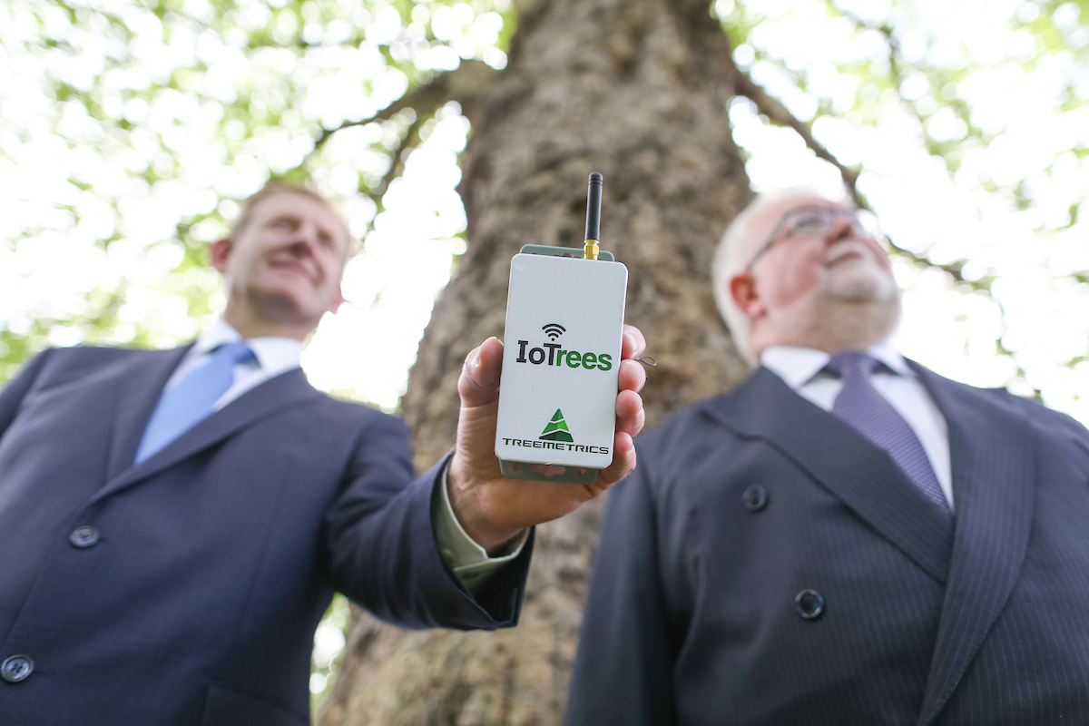 Treemetrics Signs €1.2 Million Contract with ESA to deliver the Internet for Trees