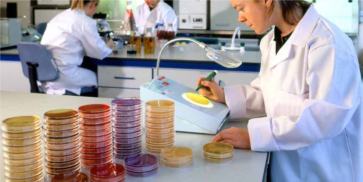 Teagasc invest €5.2m in next generation of research leaders