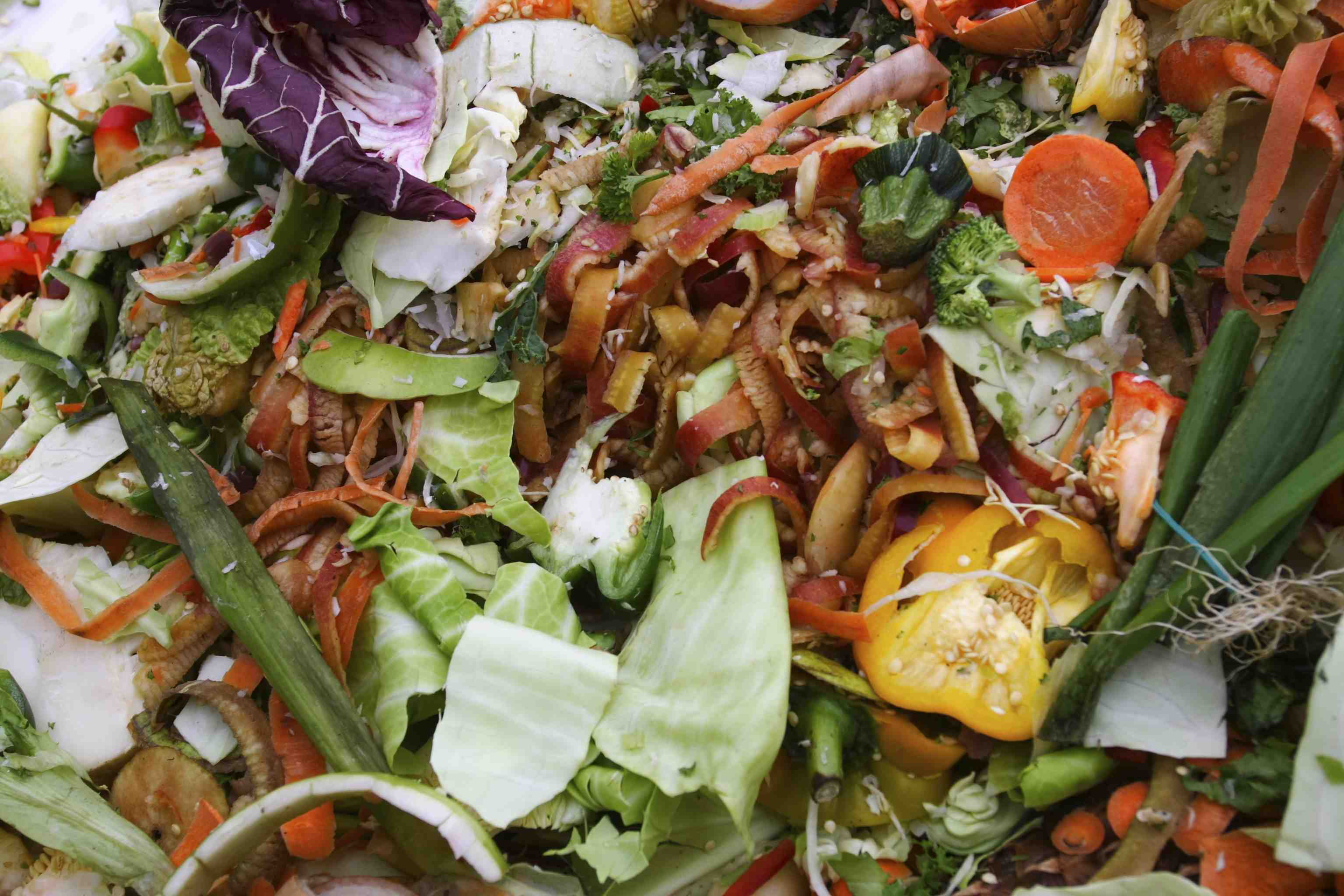 Food Waste generated in a Retail Premises