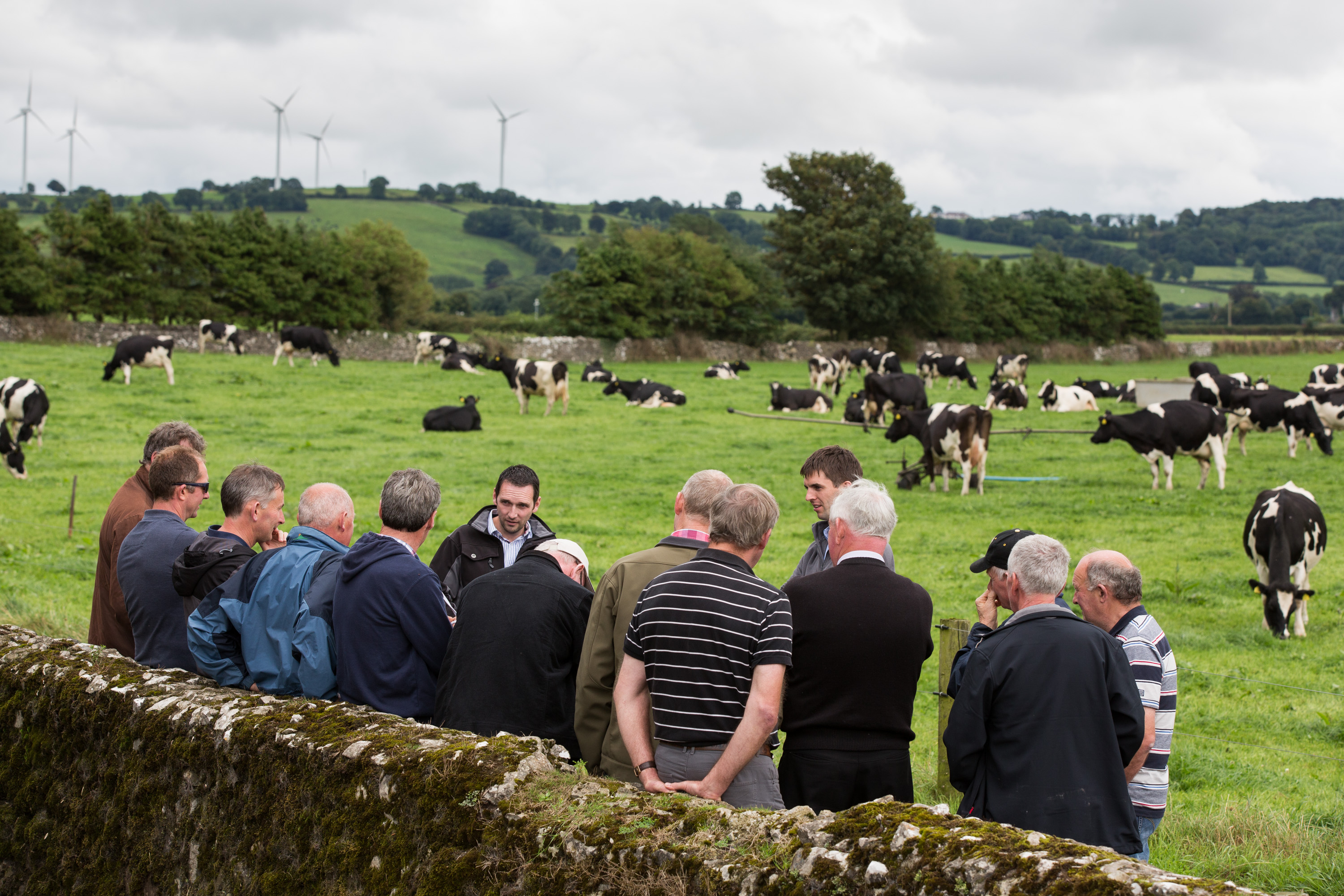 High turnout for Bord Bia and Teagasc Knowledge Transfer (KT) farm walk highlighting the value of Quality Assurance and Origin Green to farmers