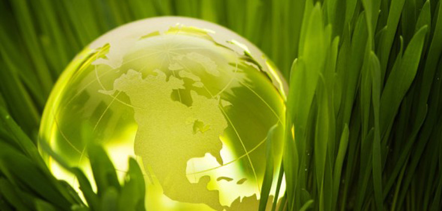 Lean and environmental sustainability within the medtech industry