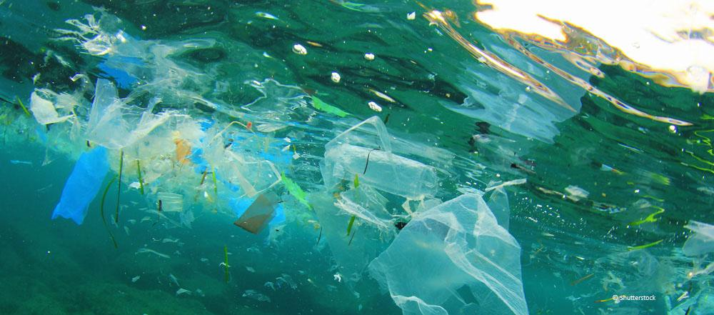 Environment ministers discussed the Circular Economy and the Plastics Strategy