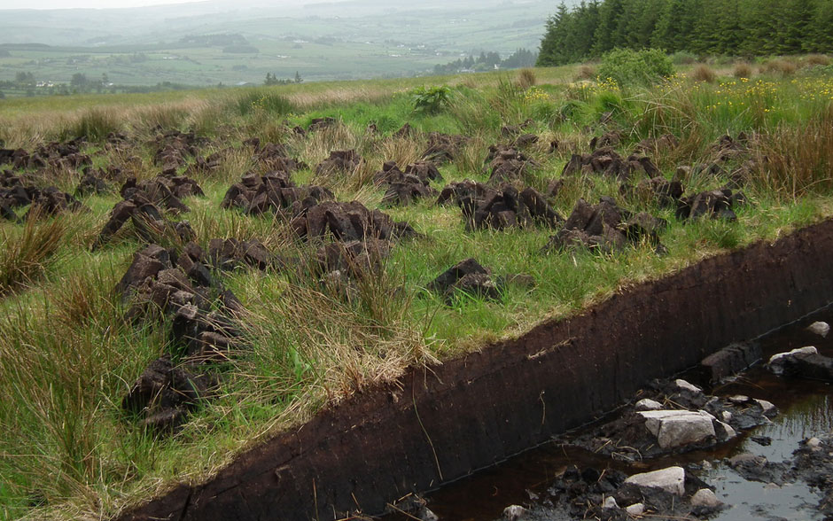 Blanket Bogs, Hydrology & Ecosystem Services to Water
