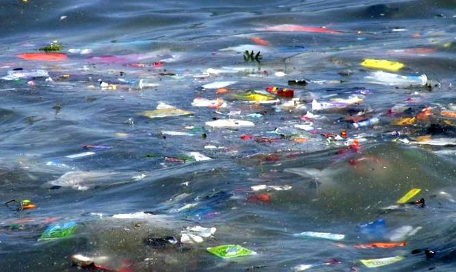 OECD Forum Addresses Plastic Waste in the Ocean
