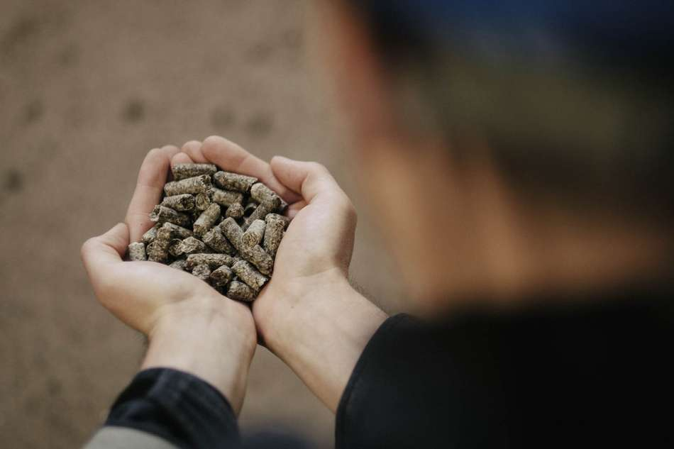 Bord na Móna backs Irish Biomass supply chain